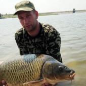 Карп 10.98 кг, пойманный на бойл КАЛЬМАР•КЛЮКВА