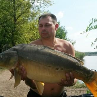 Карп 13.2 кг, пойманный на долгорастворимый бойл КАЛЬМАР•КЛЮКВА>