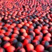 Soluble amino POP-UP two-flavor PLUM•BLACK PEPPER (СЛИВА•ЧЕРНЫЙ ПЕРЕЦ) Ø12 мм